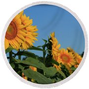 Round Beach Towel featuring the photograph Facing East by Chris Berry