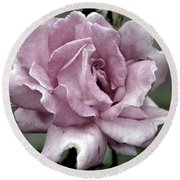 Faded Beauty Rose 0226 H_2 Round Beach Towel