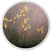 Round Beach Towel featuring the photograph Faded From The Valley by Randi Grace Nilsberg