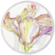 Faded Hibiscus Round Beach Towel by Nadine Dennis