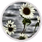 Round Beach Towel featuring the photograph Fading Sunflowers by Susan Kinney