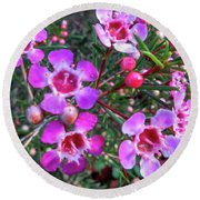 Fading To Pink Round Beach Towel