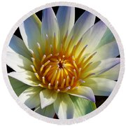Fairest Lily Round Beach Towel