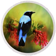 Fairy Bluebird Round Beach Towel by Suzanne Handel
