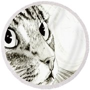 Fairy Light Tabby Cat Drawing Round Beach Towel