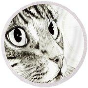 Fairy Light Tabby Cat Drawing Round Beach Towel
