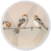 Fairy Martins Round Beach Towel