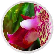 Fairy Orchid Round Beach Towel