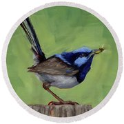 Round Beach Towel featuring the painting Fairy Wren With Lunch  by Margaret Stockdale