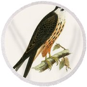 Falco Eleonorae Round Beach Towel by English School