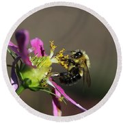 Fall Bumblebee   Round Beach Towel