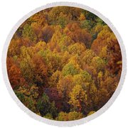 Round Beach Towel featuring the photograph Fall Cluster by Eric Liller