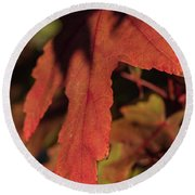 Fall Color 5528 16 Round Beach Towel