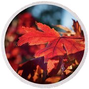 Fall Color 5528 23 Round Beach Towel