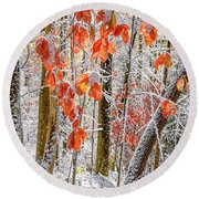 Fall Color Autumn Snow Round Beach Towel