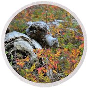 Round Beach Towel featuring the photograph Fall Color On The Beach by Ronda Broatch