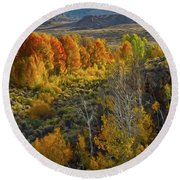 Fall Colors At Aspen Canyon Round Beach Towel
