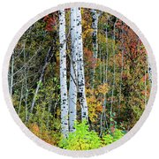 Round Beach Towel featuring the photograph Fall Colors by Bryan Carter
