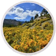 Fall Colors Come To Mt. Charleston Round Beach Towel