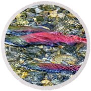 Round Beach Towel featuring the photograph Fall Colors by David Lawson