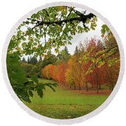 Fall Colors Of Maple Trees Round Beach Towel