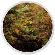 Round Beach Towel featuring the photograph Fall Colors On The Trail by Shelby Young