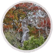 Fall Colors Once Again Round Beach Towel
