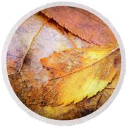 Fall Elm Leaves Round Beach Towel