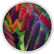 Round Beach Towel featuring the photograph Fall Feathers by Kendall McKernon