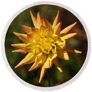 Round Beach Towel featuring the photograph Fall Flower by Richard Bryce and Family