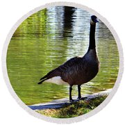 Fall Goose Round Beach Towel