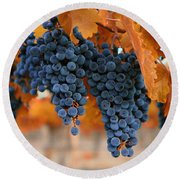 Fall Grapes Fall Colors Round Beach Towel