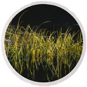 Fall Grasses - Snake River Round Beach Towel