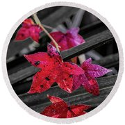 Fall In Louisiana Round Beach Towel by Andy Crawford