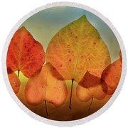 Fall Leaves #3 Round Beach Towel
