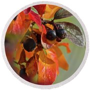 Round Beach Towel featuring the photograph Fall Leaves And Berries by Ann E Robson