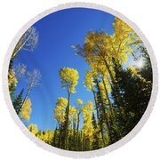Fall Light Round Beach Towel