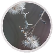 Round Beach Towel featuring the photograph Fall - Macro by Jeff Burgess