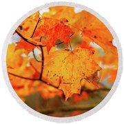 Fall Maple Leaf Round Beach Towel