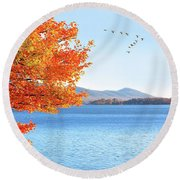 Fall Maple Tree Graces Smith Mountain Lake, Va Round Beach Towel
