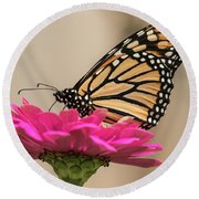 Fall Monarch 2016-4 Round Beach Towel by Thomas Young