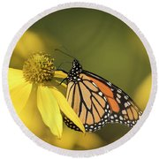 Fall Monarch 2016-5 Round Beach Towel