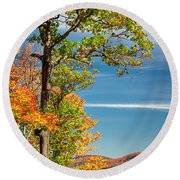 Round Beach Towel featuring the photograph Fall Oak Tree by Elena Elisseeva