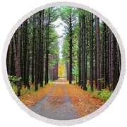 Fall Pines Road Round Beach Towel