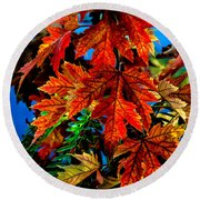 Fall Reds Round Beach Towel by Robert Bales