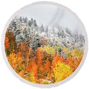 Fall To Winter Canvas Print, Photographic Print, Art Print, Framed Print, Greeting Card, Iphone Case Round Beach Towel