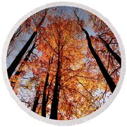 Round Beach Towel featuring the photograph Fall Trees Sky by Meta Gatschenberger