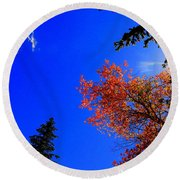 Round Beach Towel featuring the photograph Fall Up by Karen Shackles