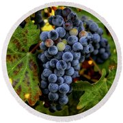 Round Beach Towel featuring the photograph Fall Wine Grapes by Lynn Hopwood