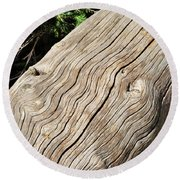 Fallen Fir Round Beach Towel